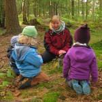 Gemeinsam entdecken wir die Schätze des Waldes